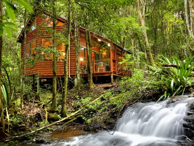 The Mouses House - Rainforest Retreat