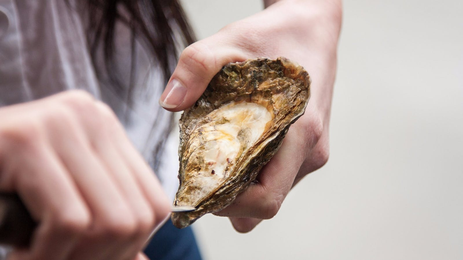 Fresh is best! Taste oysters fresh from the local farms