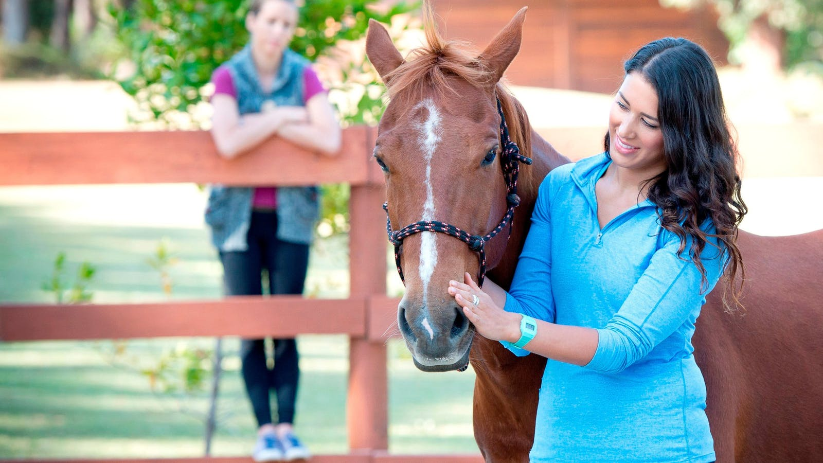 Gwinganna Lifestyle Retreat Equine Therapies