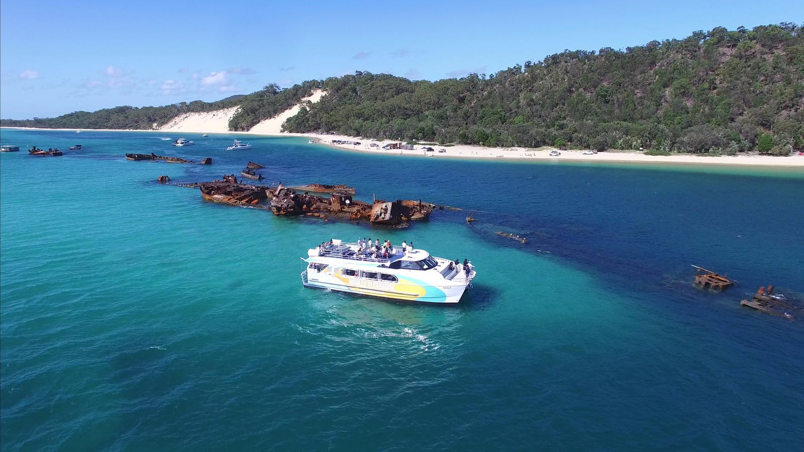 Snorkel the famous Tangalooma Wrecks on our day tour to Moreton Island