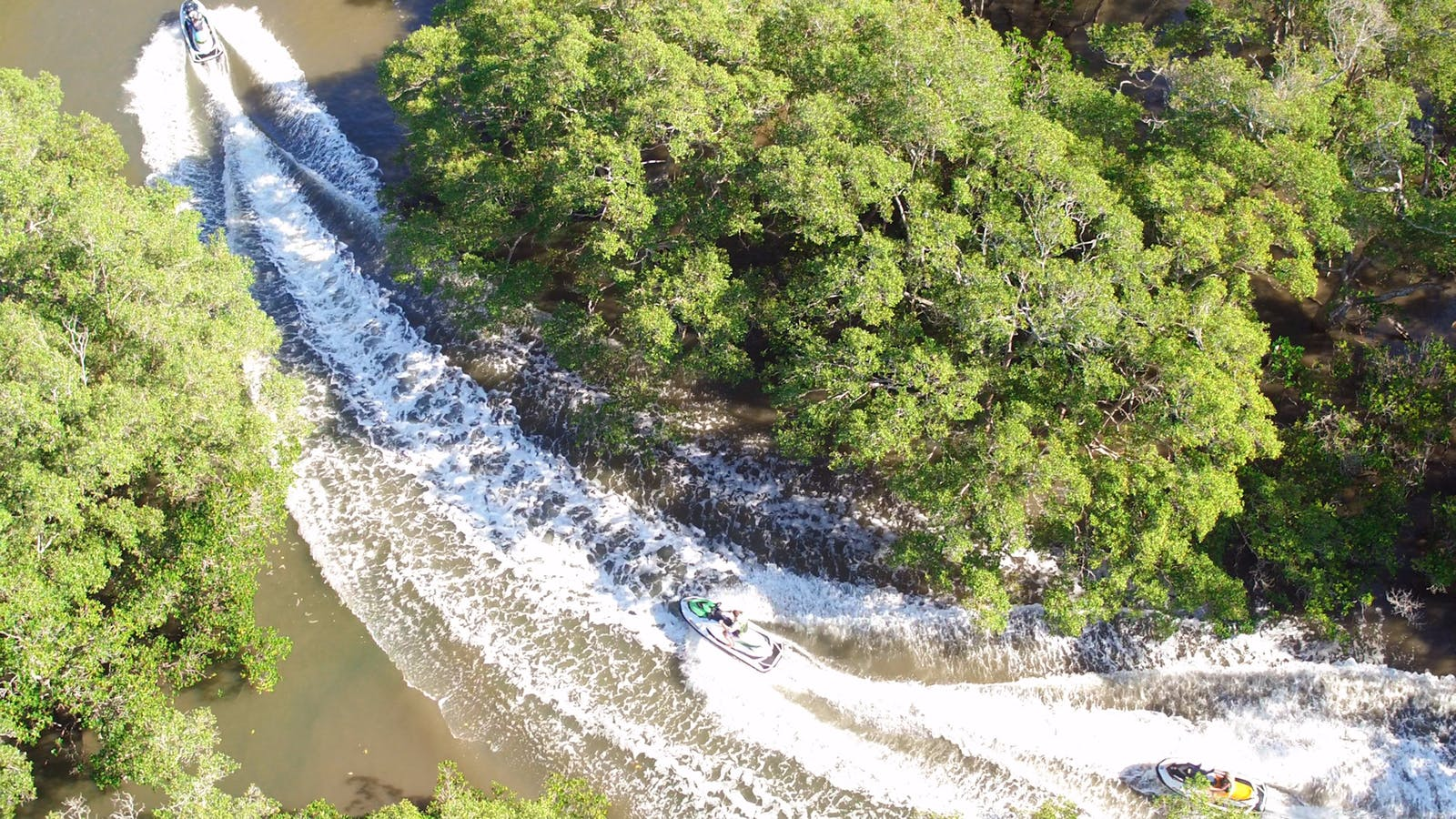 Blast your way through the mangroves