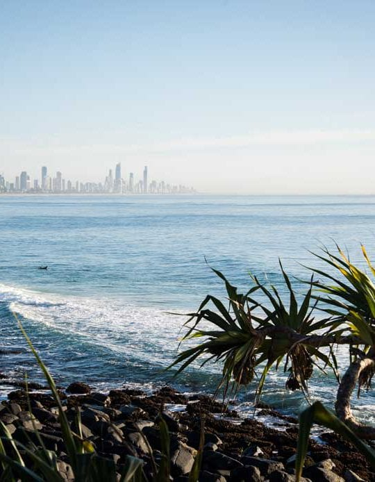 Burleigh Hill looking out to Surfers Paradise