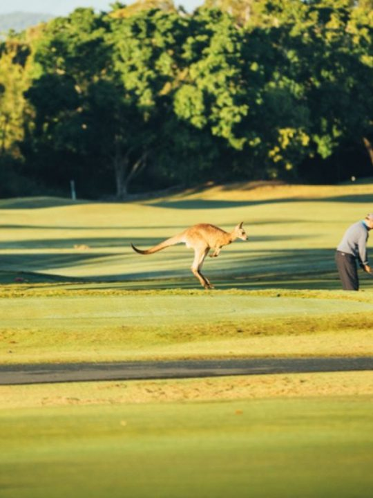 golf on the gold coast