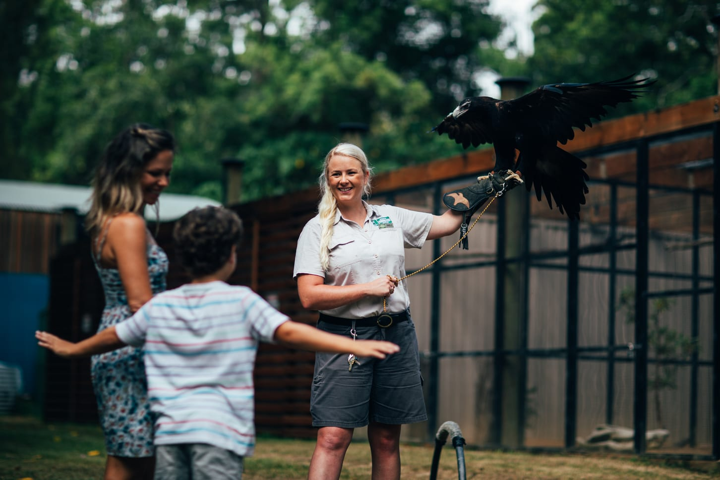 Currumbin Wildlife Sanctuary girl with wedge tail eagle