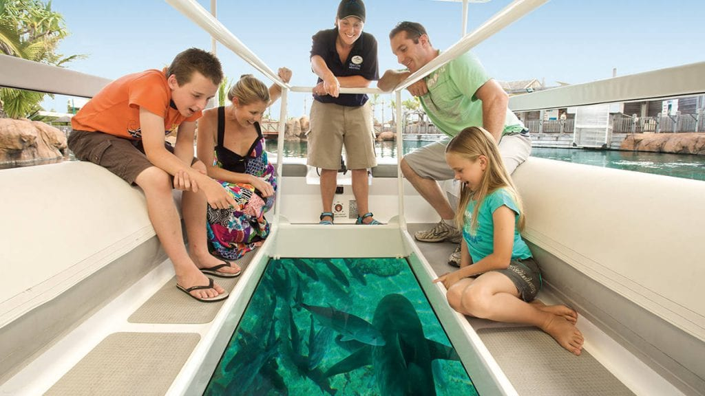 Shark Bay Glass Bottom Boat